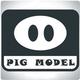 PIG MODEL